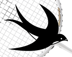 Martlet Badminton Club Horsell Woking Surrey