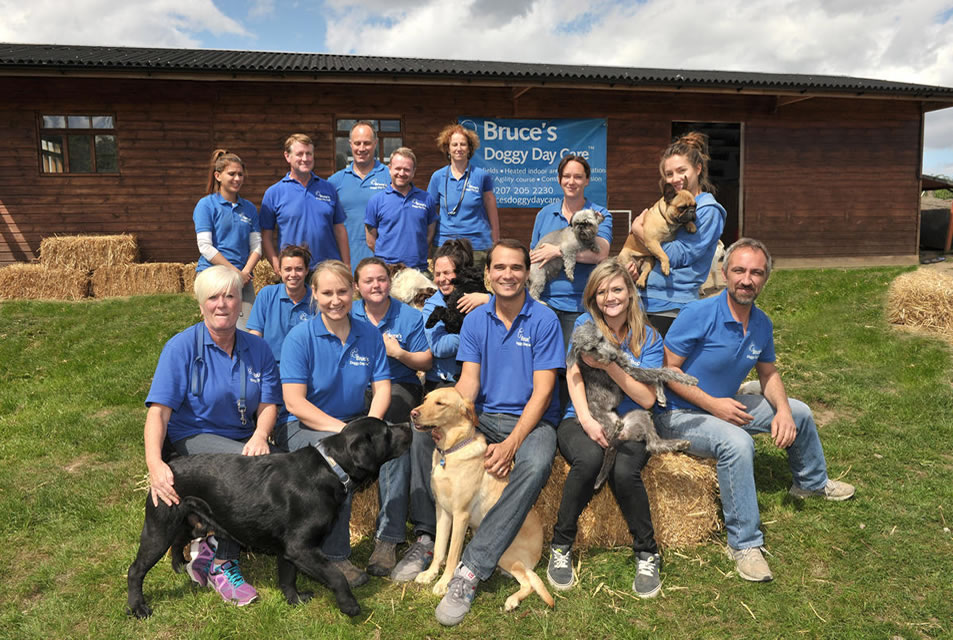 Bruce's Doggy Day Care is a multi-award-winning business running two dog crèche centres in Cobham and Ripley, Surrey.