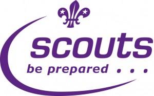 Walton & Weybridge Scouts participate & organise Oatlands Village Fayre