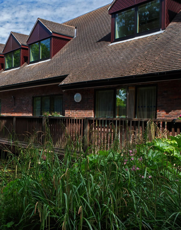 Windows & Roof of Methodist Church Heath Road Weybridge Surrey