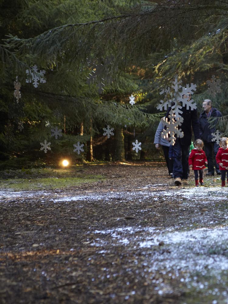 Visit Father Christmas at Santa's Secret Forest in Addlestone near Weybridge Surrey