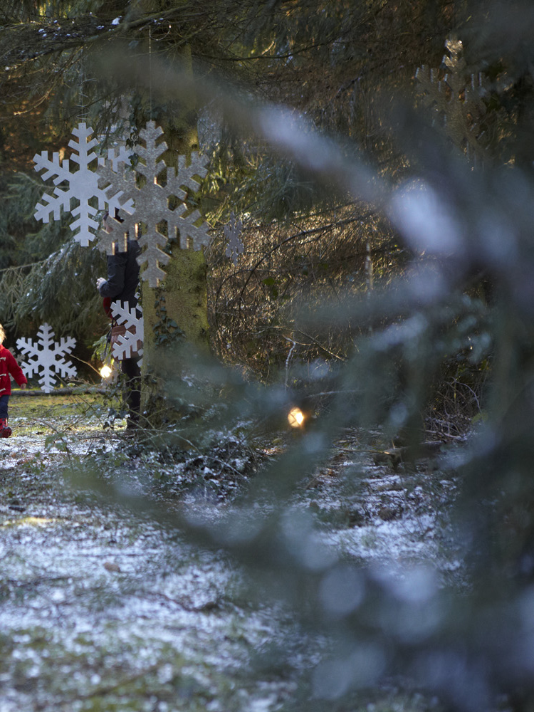 Santa's Grotto - Kids can see Father Christmas at Santa's Secret Forest in Addlestone near Weybridge Surrey