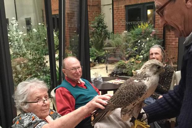 Activites For Senior Residents at Silvermere Care Home Cobham Weybridge Surrey - Birds