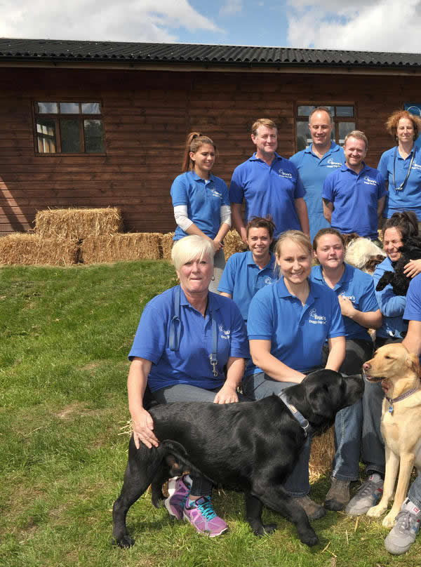 Bruces Doggy Day Care Team