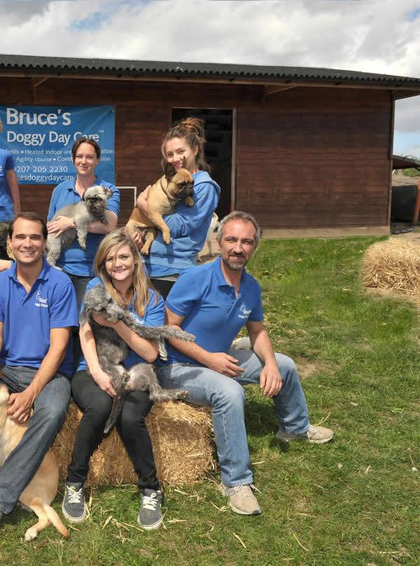 Dog Day Care Cobham Ripley