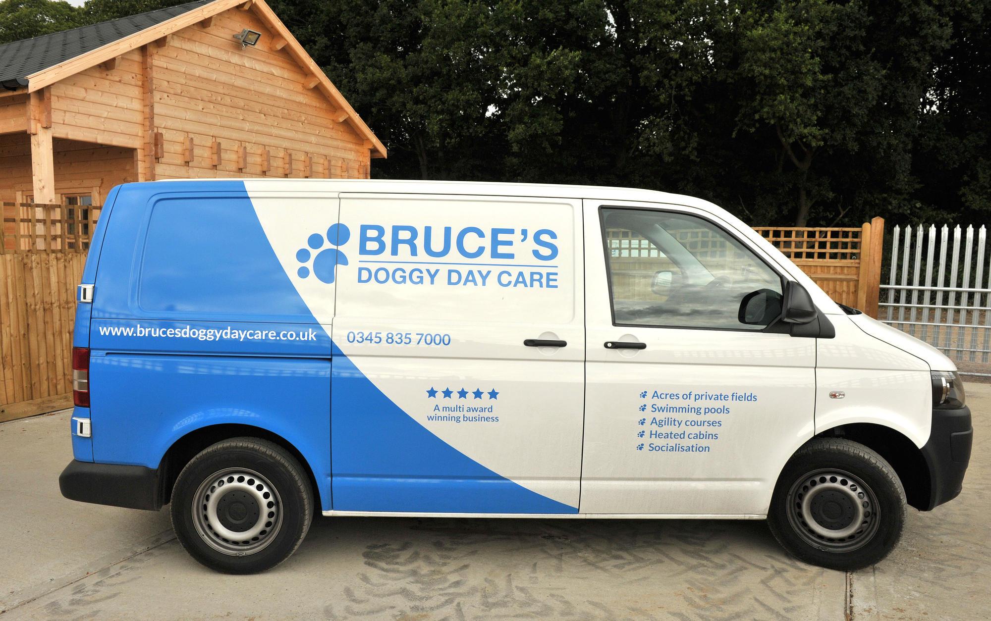 Dog Day Care Transport