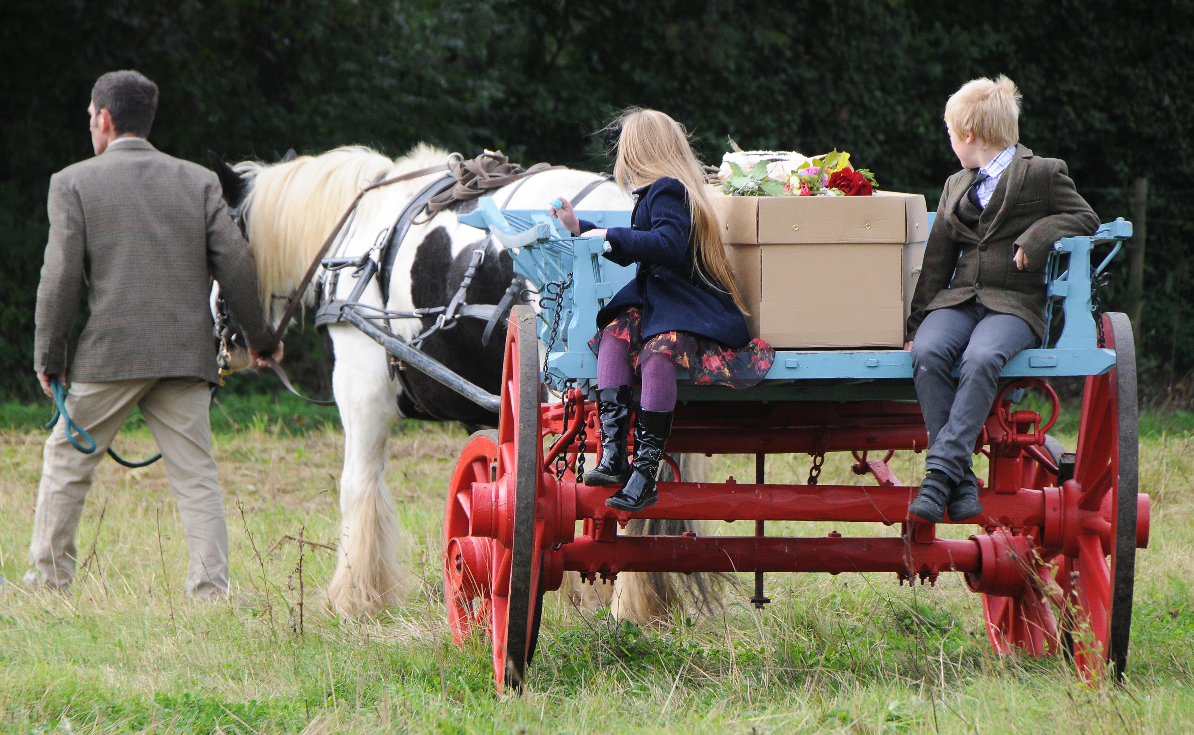A Natural Burial at Clandon Wood Surrey Hills Natural Burial Reserve photo by Dani Maimone