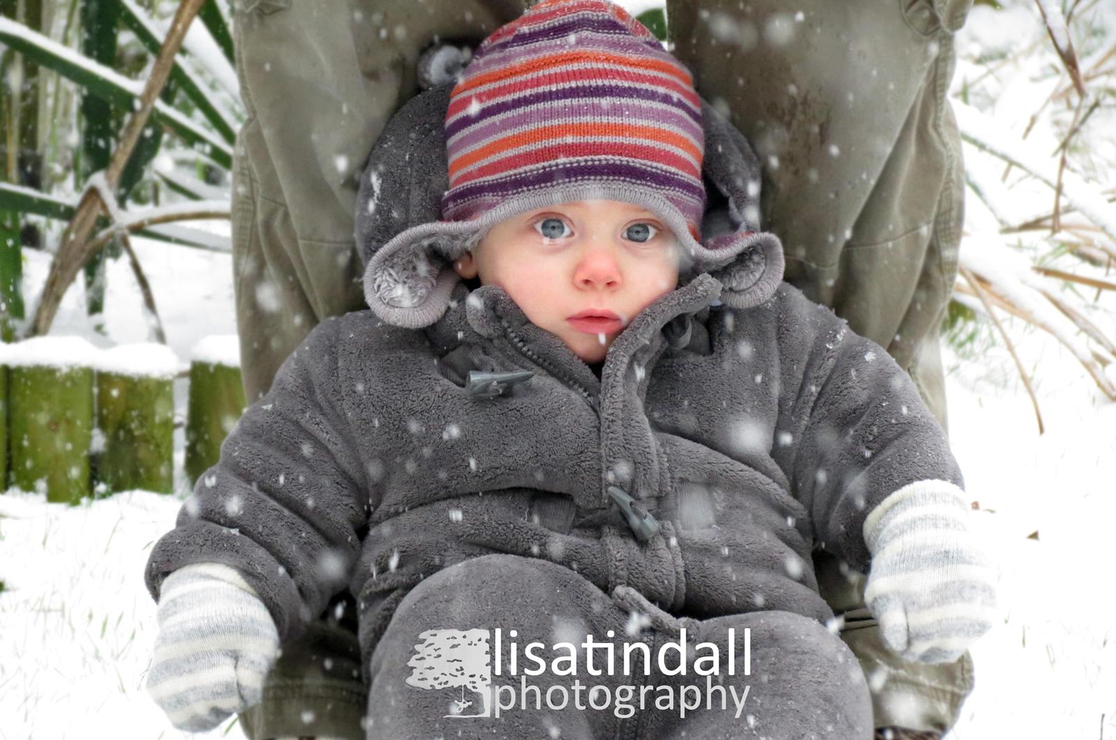 Lisa Tindall Photography