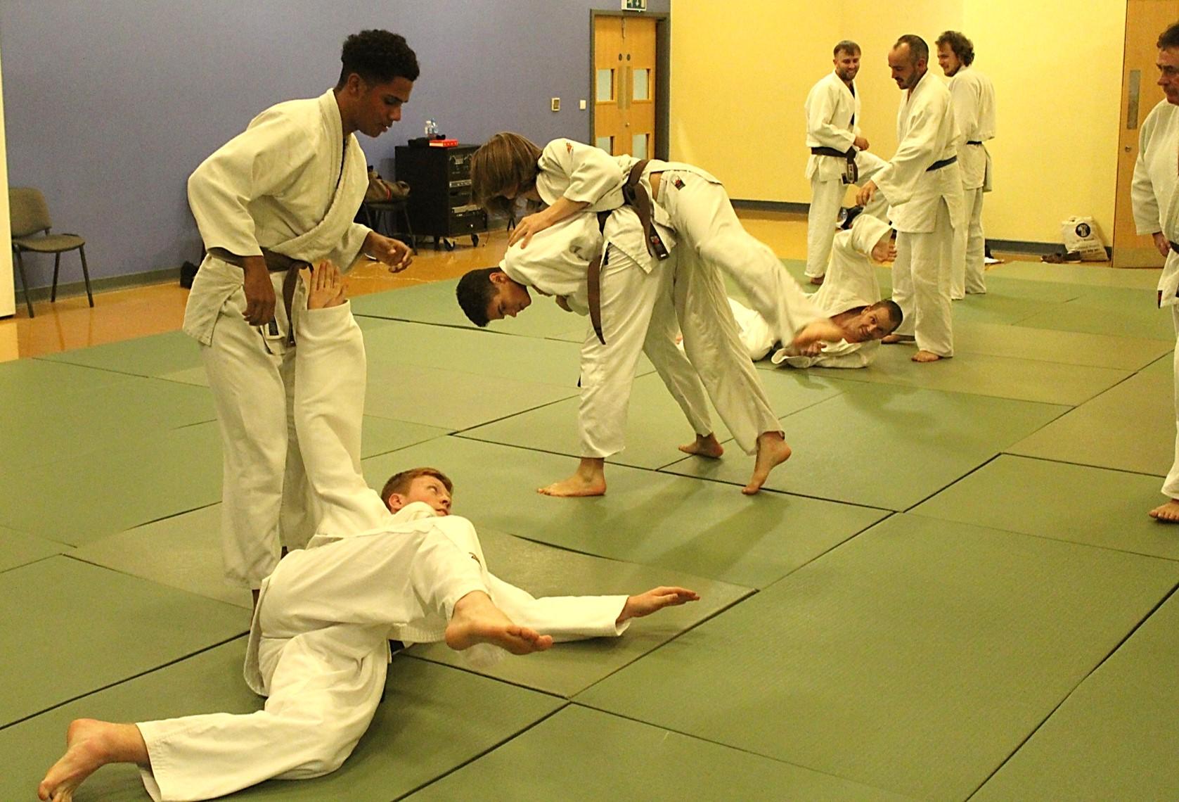 Judo Class for Adults at Elmbridge Xcel Leisure Centre Walton-on-Thames Surrey