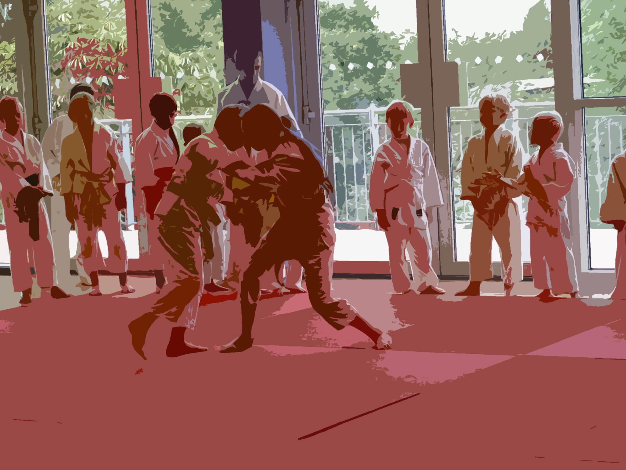 Judo Club at Elmbridge Xcel Sports Centre Walton on Thames Surrey