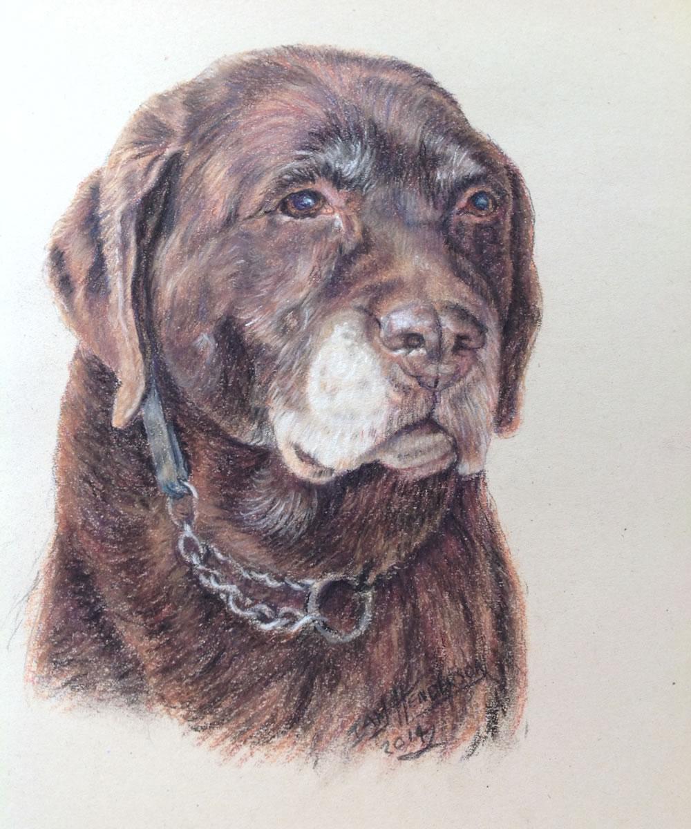 Dog Portrait Painting Commission - Weybridge Surrey Artists Advertisement