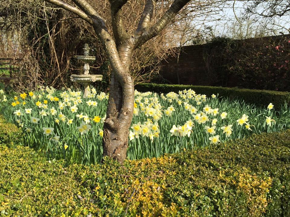 Garden Hopper Landscaping Gardening Driveways Weybridge Elmbridge Surrey