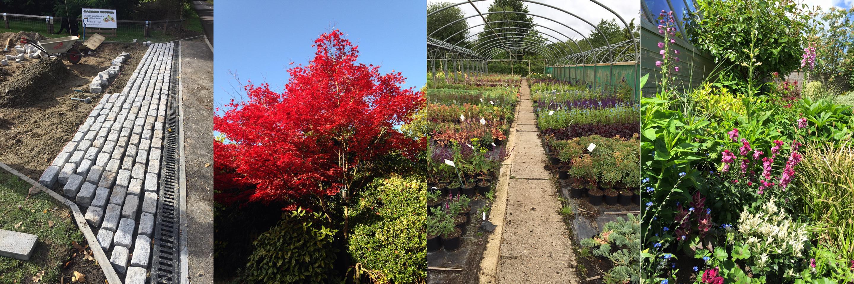 Garden Hopper - Gardening in Woking Walton Hersham Surrey