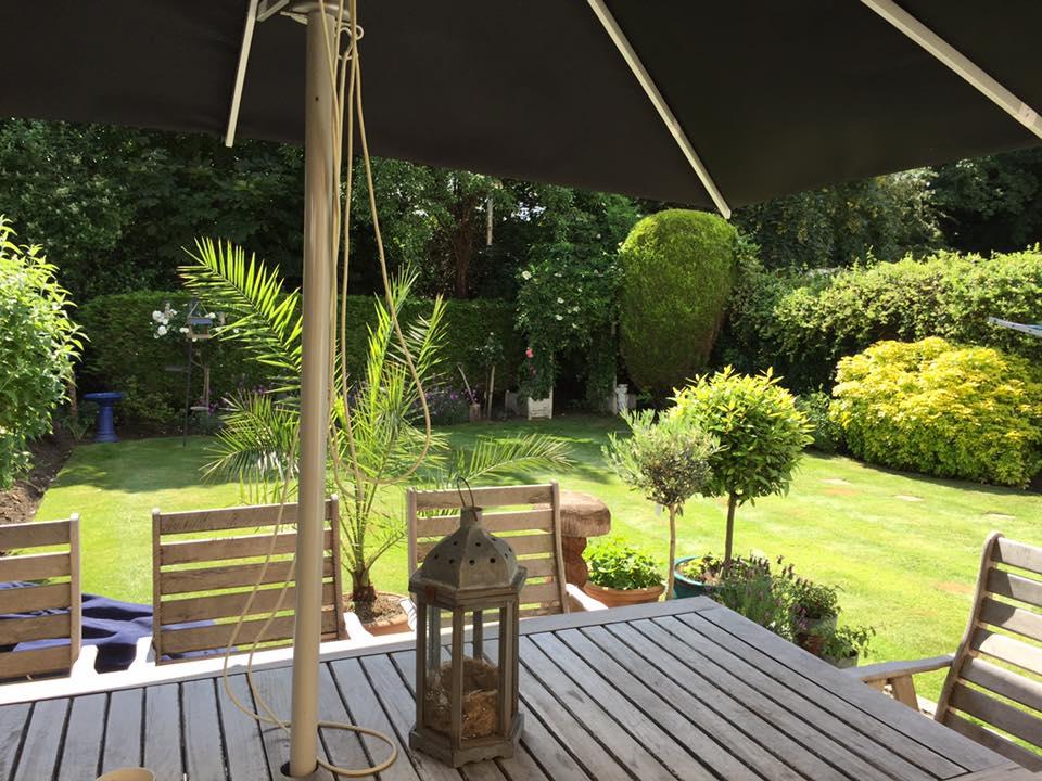 Gardener in Weybridge Surrey
