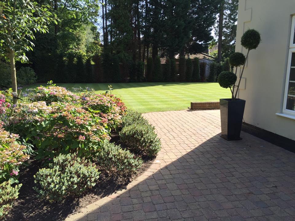Gardening Services in Surrey