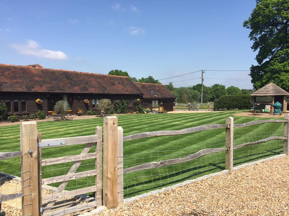 Weeding Lawns Landscaping Weybridge Elmbridge Surrey