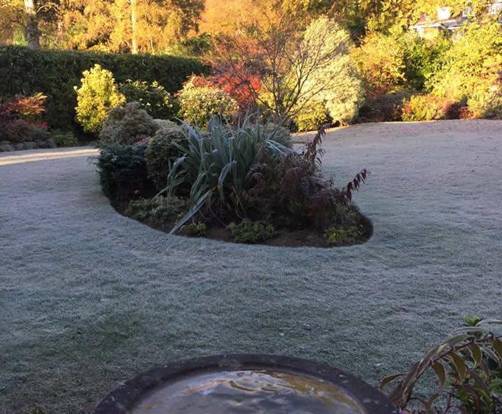 Winter Garden Maintenance Surrey